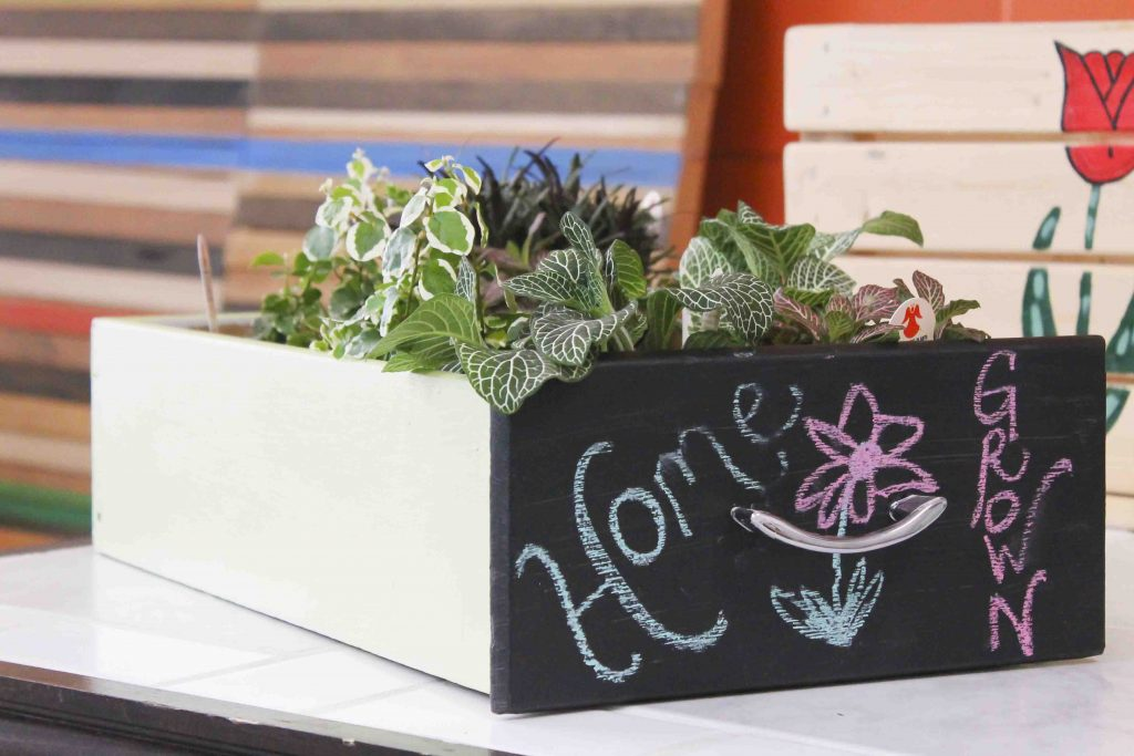 Completed DIY Seed Starter and Garden carrier shown with plants