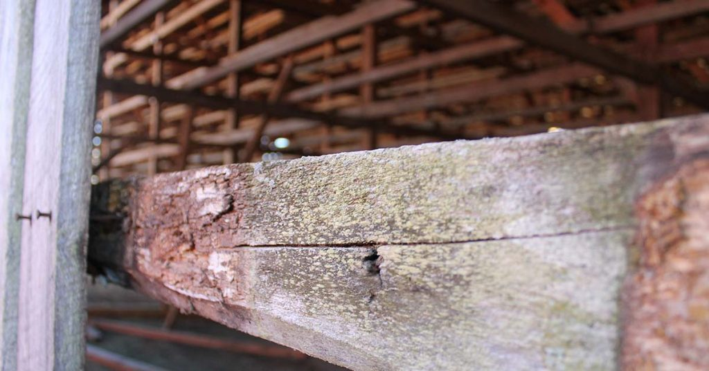 detail view of the old lumber